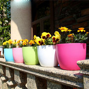 Garden Plastic Round Flower Pot Thick Automatic Irrigation Resin Flesh Potted  Outdoor Bancony