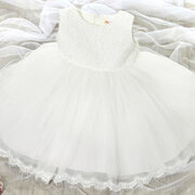 Big Bow Toddler Girls Kids Formal Lace Princess Dresses Ball Gown For 2Y-13Y