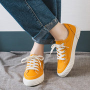 Retro Lace Up Sneakers Canves Schuhe