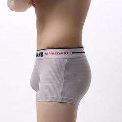 Mens Sexy Patchwork Net Boxer Briefs Letter Print Waistband Nylon Breathable Underwear With Pouch