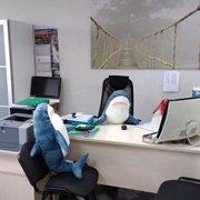 80/100 cm grande taille requin oreiller PP coton peluche coussin jouets cadeau d'enfant câlin oreiller