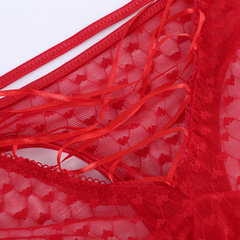 Culotte taille haute sexy creuse See Through Lace Low Rise