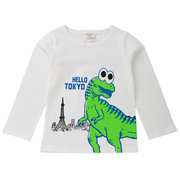 Dinosaur Printed Boys Long Sleeve Comfy T-Shirt For 2Y-11Y