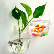 Creative Wall Hanging Transparent Glass Vase Fish Tank Hydroponic Living Room Home Decor