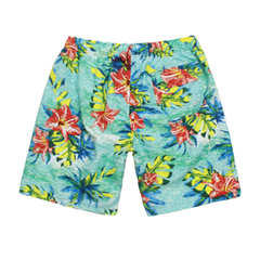 Printing Quickly Dry Drawstring Beach Board Shorts For Men