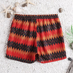 Men Ethnic Style Stripe Printing Hawaii Board Shorts Surfing Quick Drying Beach Casual Shorts