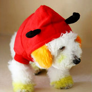 Pet Dog Cat Outstanding Devil Clothes Puppy Winter Warm Costume Red Coat Outterwear