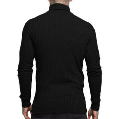 Men's Basic Brief Turtleneck Solid Color Slim Fit Knitted Casual Sweater