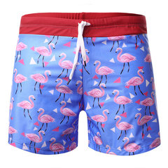 Nylon Flamingo Printing Quickly Dry Loose Board Shorts for Men