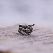 Vintage Snake Shape Ring Ancient Silver Geometric Animal Ring Exaggerated Jewelry