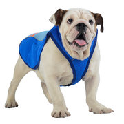 Pet Dog Cool Vest Breathable Comfortable Sunscreen Cooling Clothing Pet Jacket
