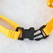 Creative Pet Dog Traction Rope Leash Belt Angel Wings Teddy Big Dog Puppy Walking Lead