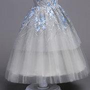 Robe de princesse élégante de mariage de filles de broderie élégante d'enfants pour 4Y-15Y