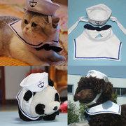 Cane del cane dell'animale domestico di modo con il cappello del costume dell'attrezzatura e del vestito del marinaio del cane del piccolo cane