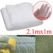 Insect Netting Garden Organic Net Crop Veg Protection Various Sizes