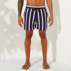 Men Multi Color Stripe Swim Shorts Quick Drying Mesh Liner Casual Shorts for Summer