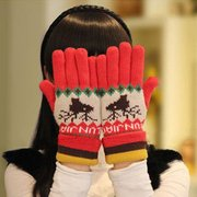 Women Warm Knit Printed Knitted Five Finger Gloves